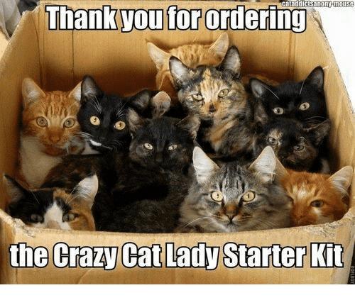 ataddictsanonytilouse-man-you-forordering-the-crazy-cat-lady-starter-kit-11292316.png