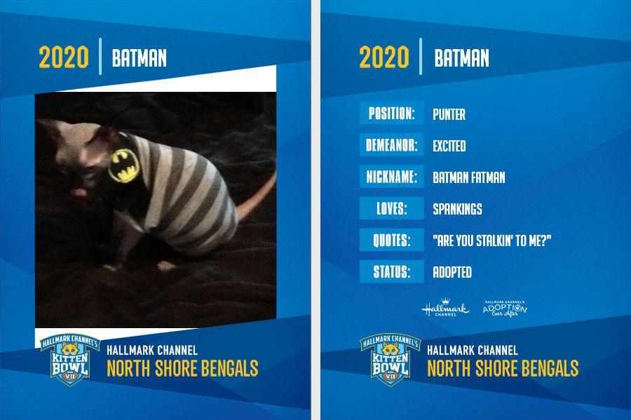 bbddja4cytrgsjxrjtjz Batman.jpg