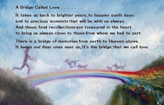 bridge called love.jpeg