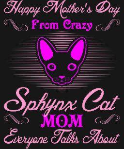 Cat mom.jpg