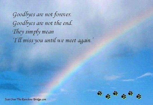 good bye is not forever rainbow helen.jpg