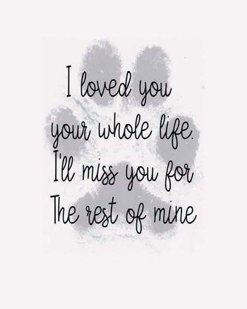 missyou my whole life.jpg